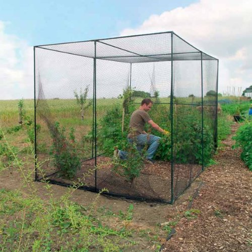 Finding or creating types of garden netting frames that work for Allotment tools for sale