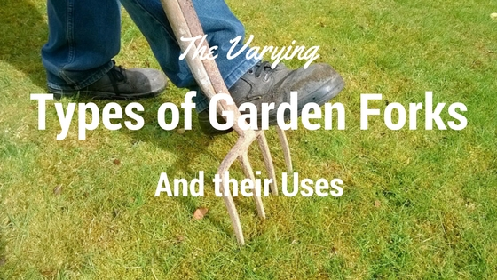 The Varying Types of Garden Forks and Their Uses