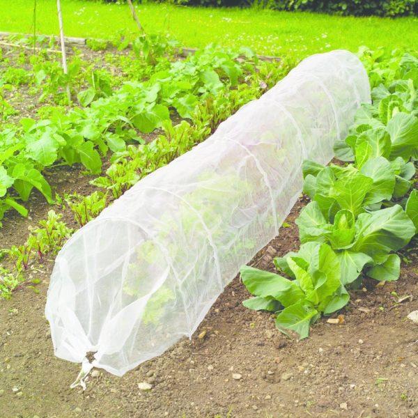 garden mesh photo